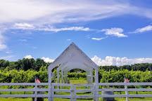The Dog and Oyster Vineyard, Irvington, United States