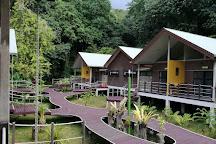 Gunung Mulu National Park, Miri District, Malaysia