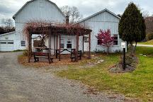 Keuka Lake Vineyards, Hammondsport, United States