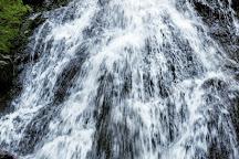 Montezuma Falls, Tasmania, Australia
