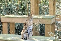 Cohanzick Zoo, Bridgeton, United States