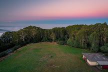 Mount Donna Buang, Warburton, Australia