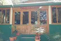 Orquigonia, Coban, Guatemala