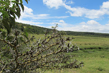 Arusha National Park, Arusha National Park, Tanzania