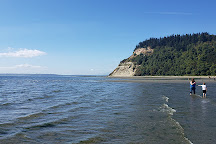 Double Bluff Beach, Freeland, United States