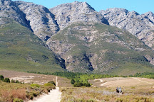 Horse About Trails, Tulbagh, South Africa