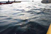 National Park Sea Kayak Tours, Bar Harbor, United States
