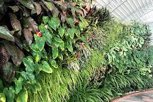Bayan Botanical Garden, Kuwait City, Kuwait