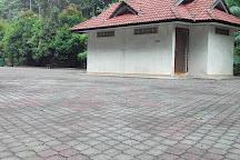 Rimba Bandar Bukit Bauk, Dungun, Malaysia