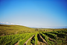 Plettenvale Wines, Plettenberg Bay, South Africa