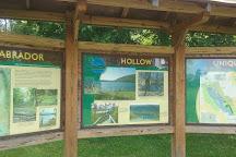 Labrador Hollow Unique Area, Tully, United States