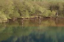 Pond Taisho, Matsumoto, Japan