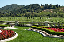Beau Wine Tours, Sonoma, United States