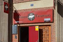 Taurino Museum (Museo Taurino), Valencia, Spain