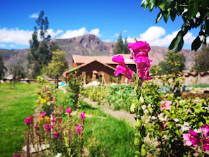 Kinsapacha Yoga Retreat & Eco Lodge Farm 6