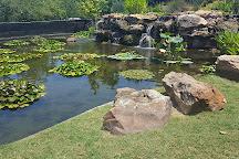 Dallas Arboretum & Botanical Gardens, Dallas, United States
