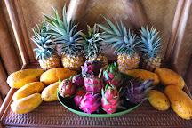 Maui Dragon Fruit Farm, Lahaina, United States