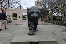 Mike the Tiger Habitat, Baton Rouge, United States
