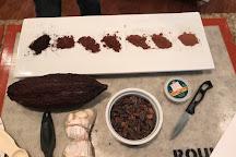 Dallas Chocolate Classes, Carrollton, United States