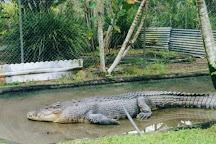 Johnstone River Crocodile & Animal Park, Innisfail, Australia