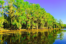 Caddo Lake State Park, Karnack, United States