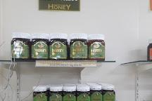 Superbee Honeyworld, Currumbin, Australia