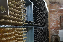 Bodega Valdigal, Toro, Spain