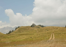 Chitral Gol National Park