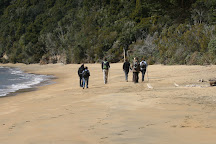 Ulva's Guided Walks, Stewart Island, New Zealand