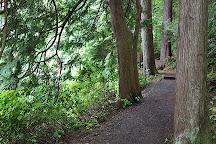 Belcarra Regional Park, Belcarra, Canada