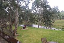 Fleurieu Hills Vineyard, Willunga, Australia