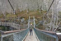 Rogie Falls, Contin, United Kingdom