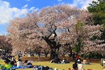 Hanegi Park, Setagaya, Japan