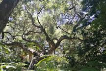 Ganna Walska Lotusland, Montecito, United States