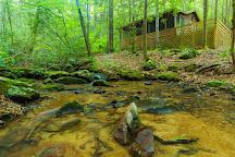 Falls Branch Falls, Cherrylog, United States