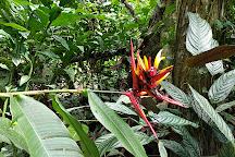 Ecocentro Danaus, La Fortuna de San Carlos, Costa Rica