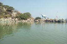 Birds Island, Ganjam, India