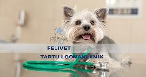 Animal Clinic Felivet