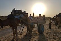 Bikaner Camel Safari, Bikaner, India