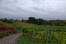 Willow Vineyards, Suttons Bay, United States