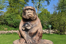 Trentham Monkey Forest, Stoke-on-Trent, United Kingdom