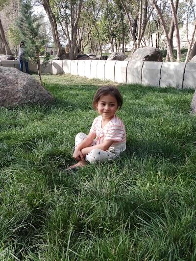 Nila Bagh - نیله باغ