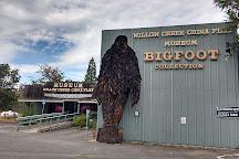 Willow Creek - China Flat Museum, Willow Creek, United States