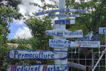The Bonaire Botanical Garden, Bonaire