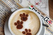 Cat Cafe, Budapest, Hungary