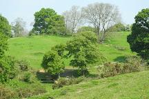 Ninesprings Country Park, Yeovil, United Kingdom