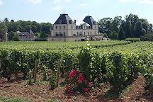 Domaine Chateau de Citeaux, Meursault, France