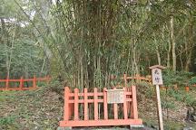 Usa Shrine Gegu, Usa, Japan