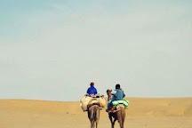 The Desert Life Camel Safari, Jaisalmer, India