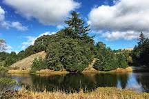 Horseshoe Lake, San Mateo, United States